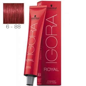 Tinte Igora Royal Rubio Oscuro Rojo Intenso 6-88 Schwarzkopf 60ml